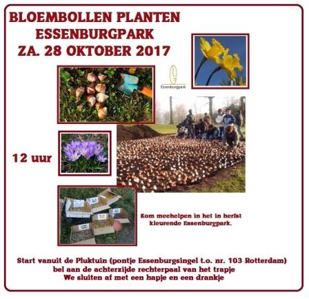bloembollen planten 28 okt 2017 flyer