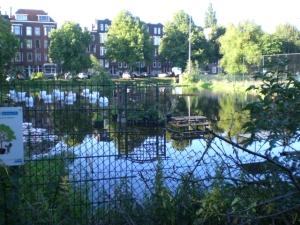 depluktuin wateroverlast 14 juli 2011 001