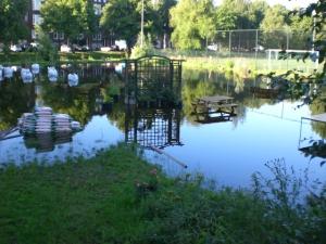 depluktuin wateroverlast 14 juli 2011 005