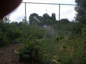 watersproei installatie pluktuin juli 2014 022