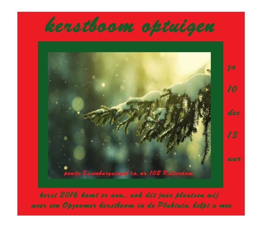 kerstboom-optuigen-dec-2016