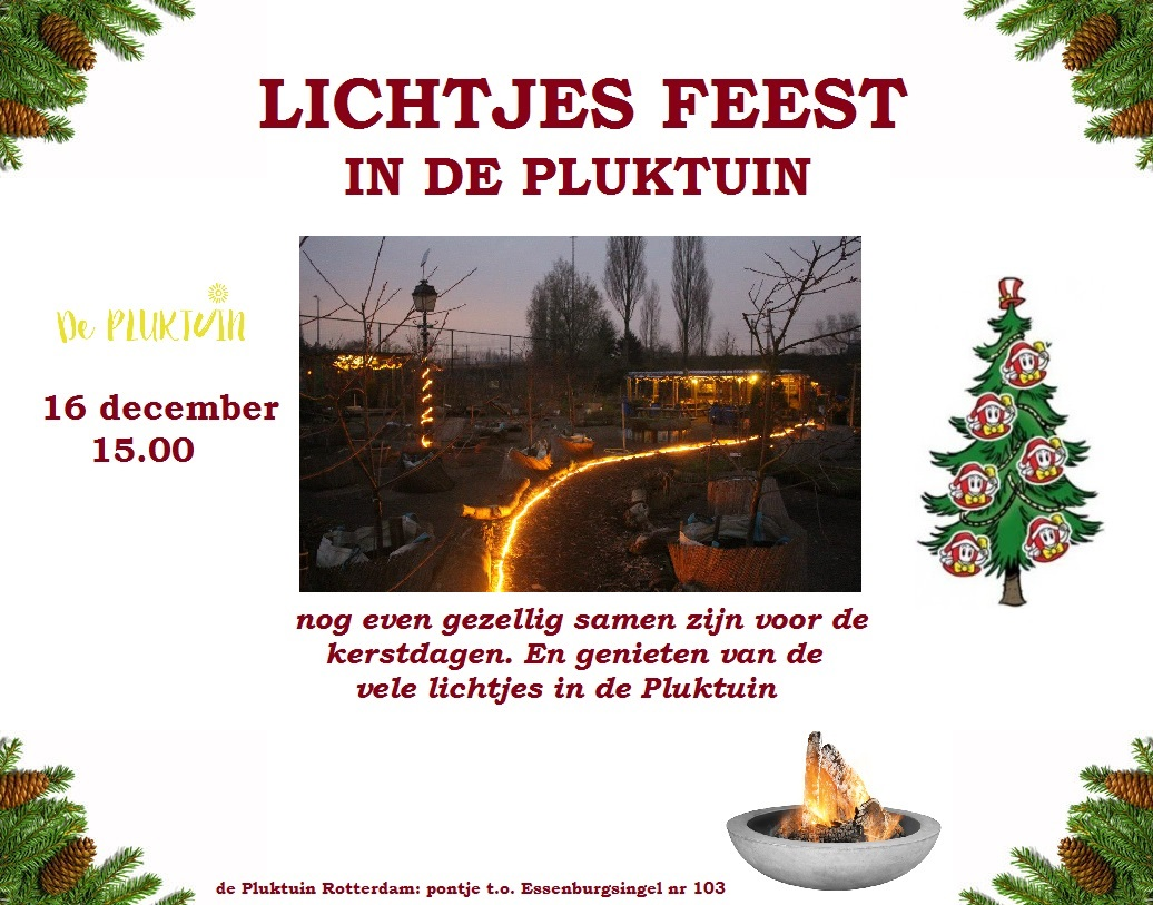 Lichtfeest de PLuktuin 16 dec 2017