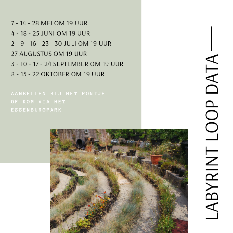 LABYRINT LOOP DATA 2019